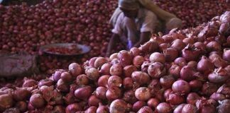 bengali news on onion