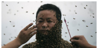 china man with bee