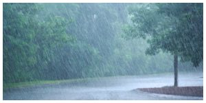 Again, there is a risk of depression in the state, the amount of rain will increase