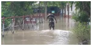 The opening of the Farakka lock gate has increased the water level in the Padma, flooded BSF camps